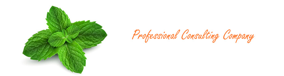 Professional Consulting Company